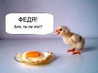 img_1639797_70_0.jpg